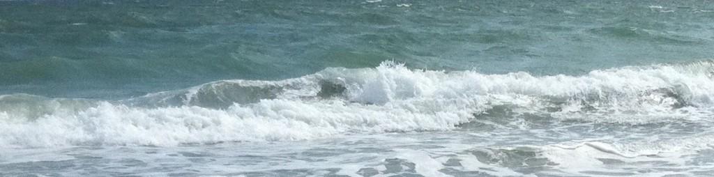 cropped-Surf11.jpg