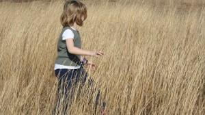 Walking thru Field of Grass