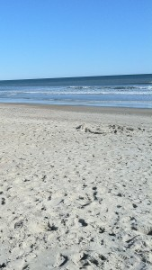 SandyBeachVert