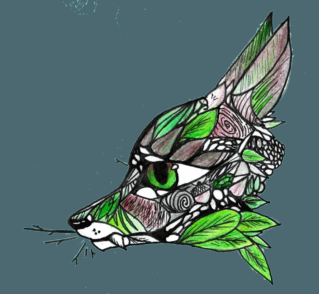 Rainforest Fox Color Image