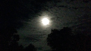 Moonlight_Clouds_wide
