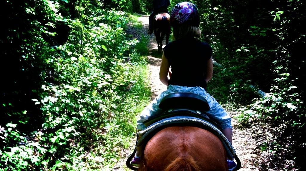 HorsebackAheadWide