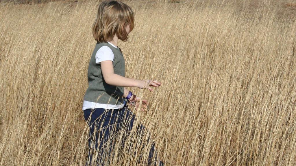 Child Walking Through Tall Grass