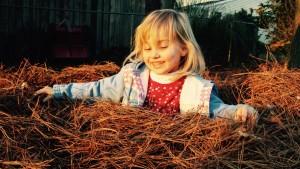 Pine Straw Smiling