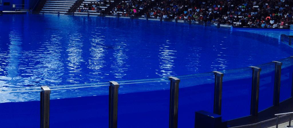 Orca Stadium at SeaWorld