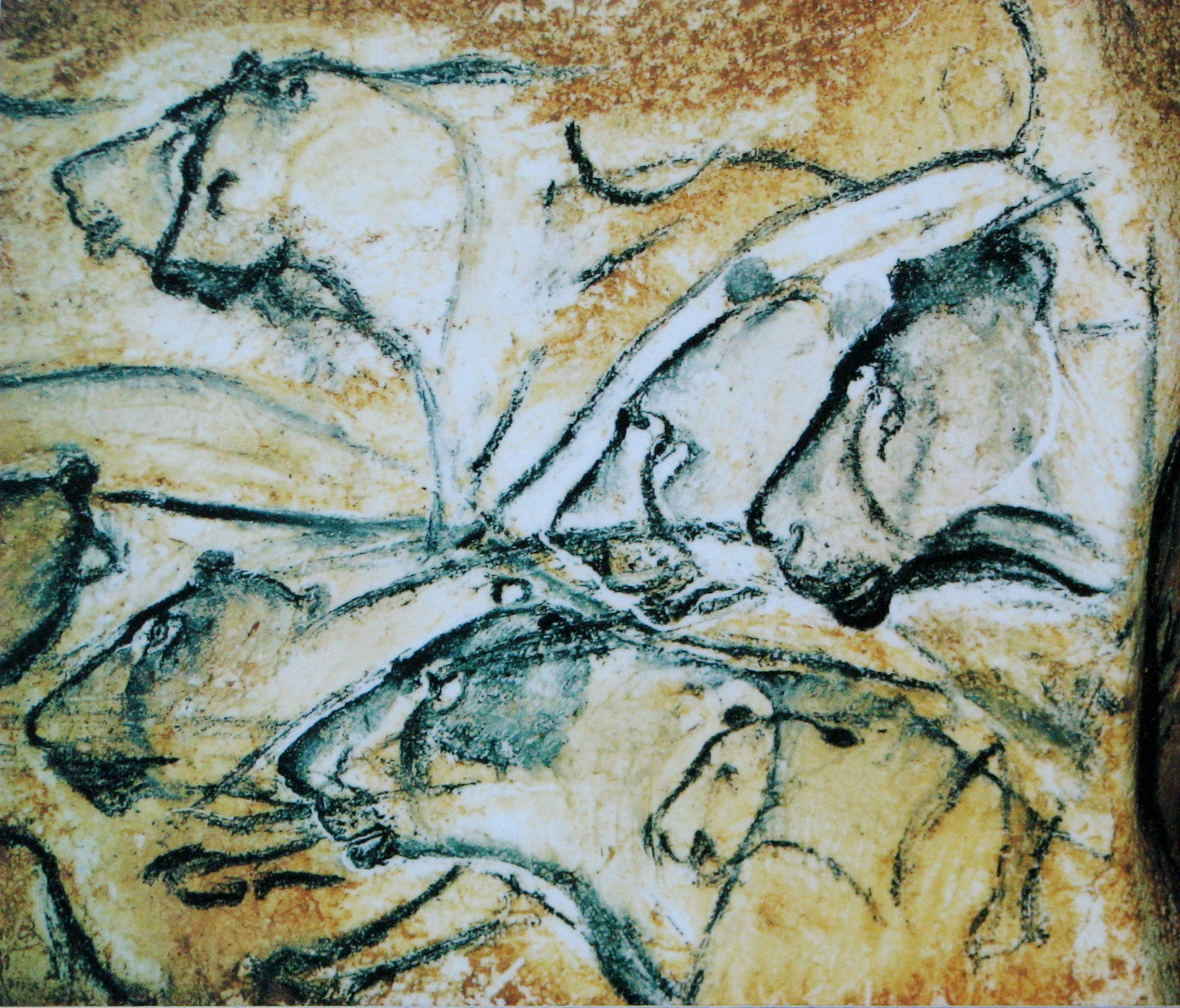 Cave Painting of Lions - Chauvet