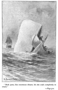 Moby Dick, illustration from 1892 edition
